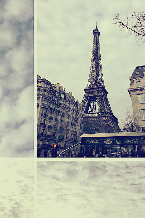 PARIS (184)