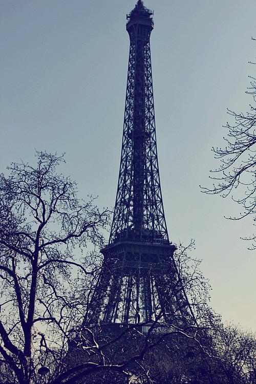 PARIS (188)
