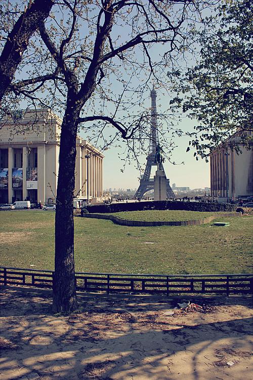 PARIS (191)