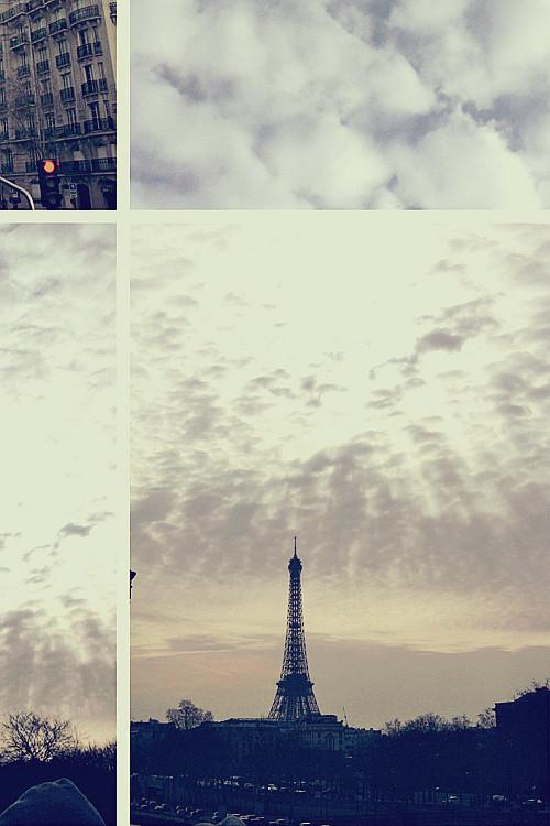 PARIS (204)