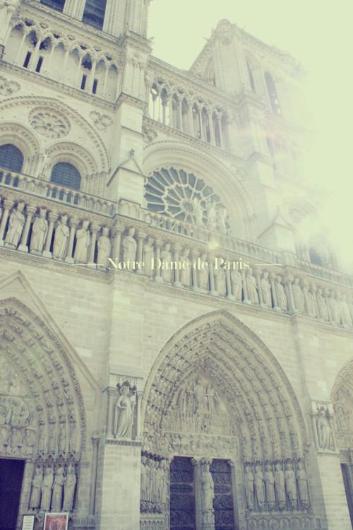 PARIS (228)